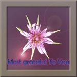 grateful star